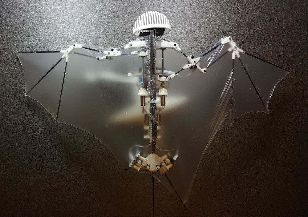 روبوت خفاش يطير في الهواء باستخدام أجنحة غشائية رقيقة