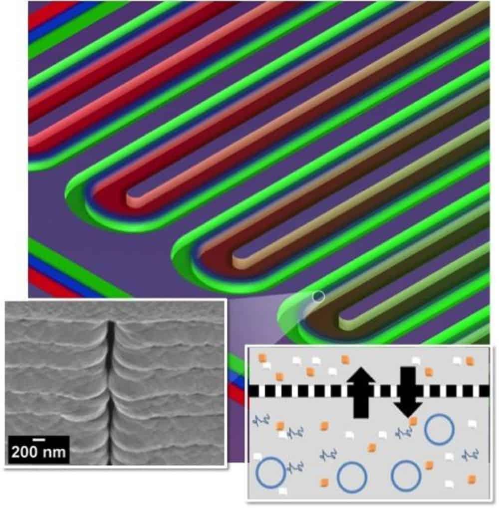مفاعل حيوي صغير يمكنه إنتاج البروتينات بدون خلايا