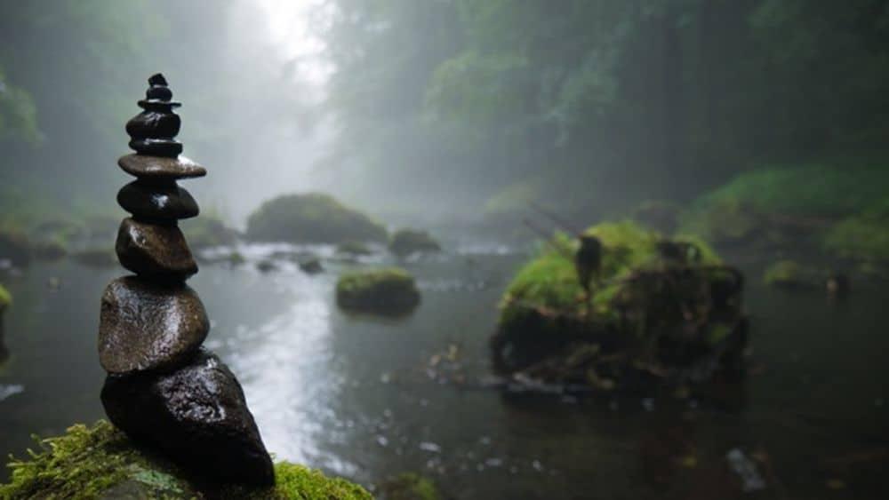 كميات مرعبة من المبيدات والأدوية في الأنهار والبحيرات