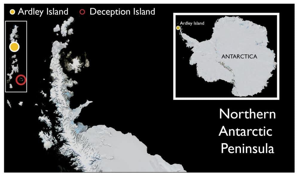 موقع جزيرة أردلي وجزيرة الخداع في القارة القطبية الجنوبية. منظر علوي مائل لجزيرة أردلي مأخوذ من حوامة تحلق فوق شبه جزيرة فيلديس. ــــــــــــــــــــــــــــــــــــــــــــــــــــــــــــــــــــــــــــــــــــــــــــــــــــــــــــــــــــــ