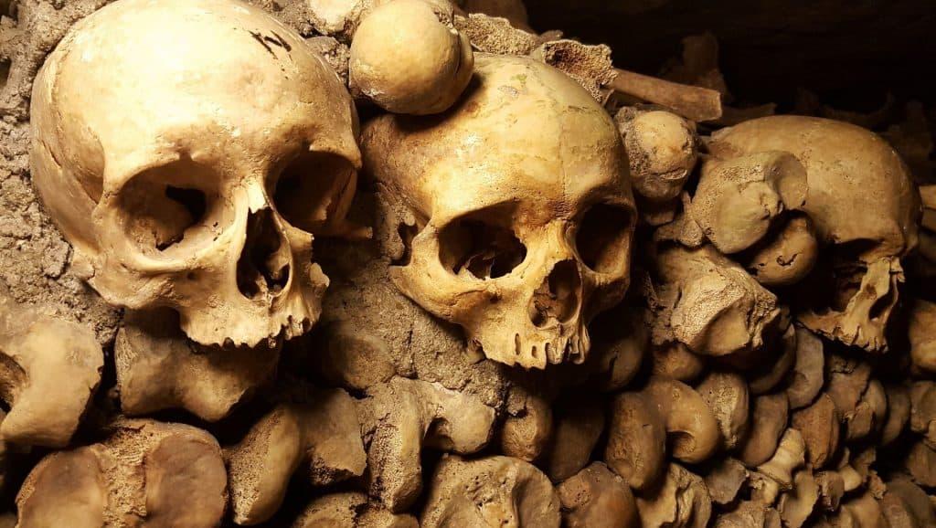 كيف يساعد الطاعون العلماء على فهم الماضي؟