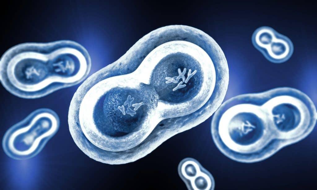 علماء يستخدمون التحرير الجيني بهدف إبطاء نمو السرطان