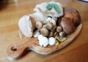 تحضير حبات الفِطر في المايكروويف قد يكون الطريقة الأمثل لطهيها وتناولها، ولكن ما هي ضريبة ذلك؟