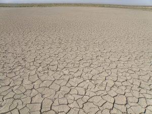التغير المناخي سيؤدي إلى مزيد من الأمطار في بعض المناطق، وإلى انعدام الأمطار في مناطق أخرى