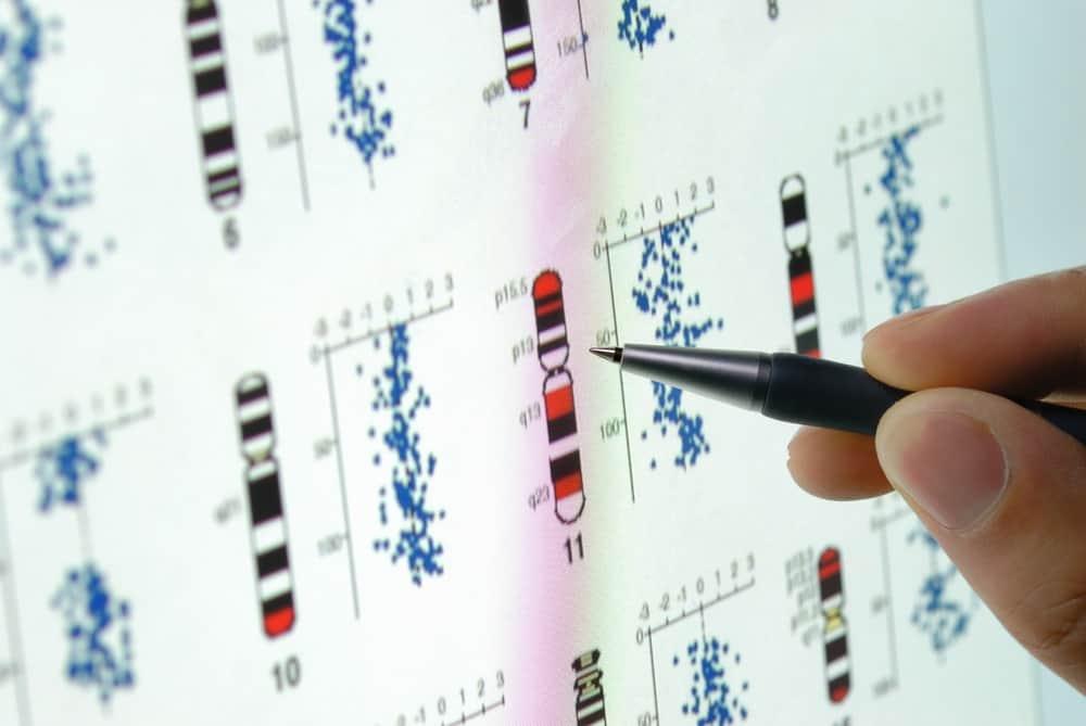 فريق بحثي من السعودية يبني قاعدة بيانات بروتينية شديدة الأهمية