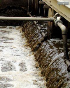 العلماء يتفحصون مياه الصرف الصحي في المدينة لدراسة صحتنا