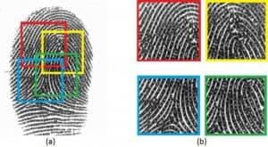 علماء الحاسوب يطورون بصمة إصبع