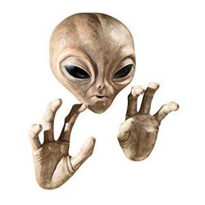 يؤسفنا أن نخيب أملكم، ولكن منظمة أنونيموس ليس لديها أي دليل يثبت اكتشاف ناسا لحياة فضائية