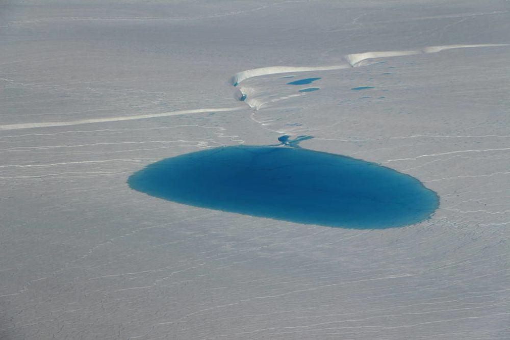 لننقذ الجليد البحري قبل فوات الأوان
