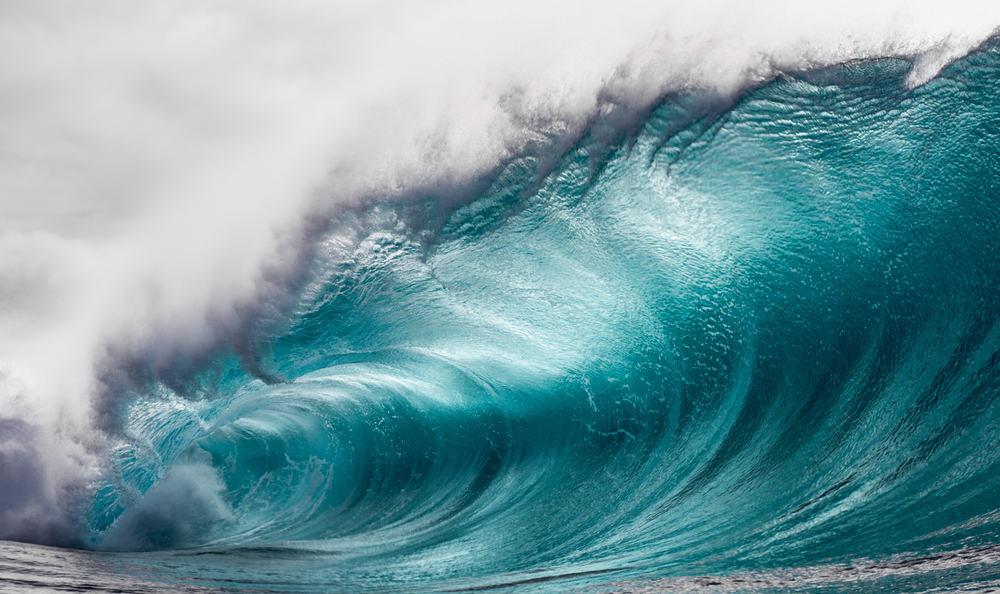 المحيط الحيوي في البحر الأحمر يتأثر بالعلاقة بين الرياح والأمواج
