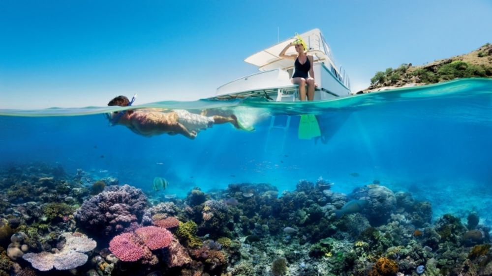 هذا المهندس يبتكر خطة طموحة لإنقاذ الشعاب المرجانية من التعير المناخي