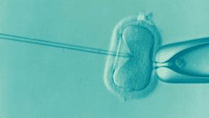 يبدو أننا نقترب من إنتاج إنسان معدّل وراثياً في المختبر