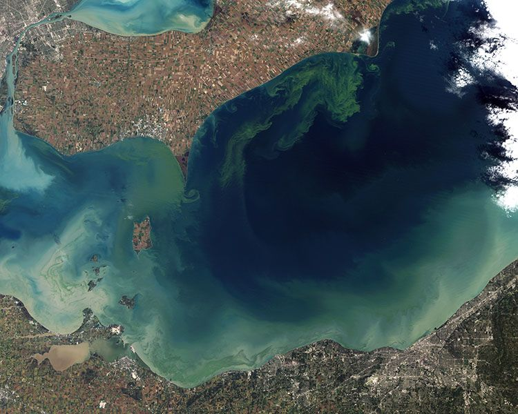 قد تكون جودة المياه العالمية في محنة