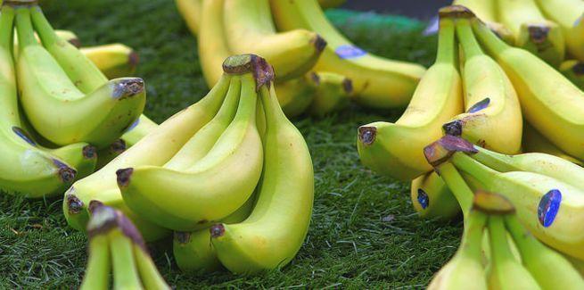 الموز يتعرض لأزمة عالمية
