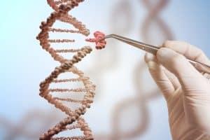 بهدف إطالة العمر: دراسة تكشف الآليات الرئيسية للشيخوخة