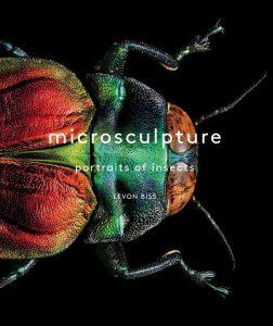 الحشرات مخلوقات مخيفة لكنها جميلة أيضاً!