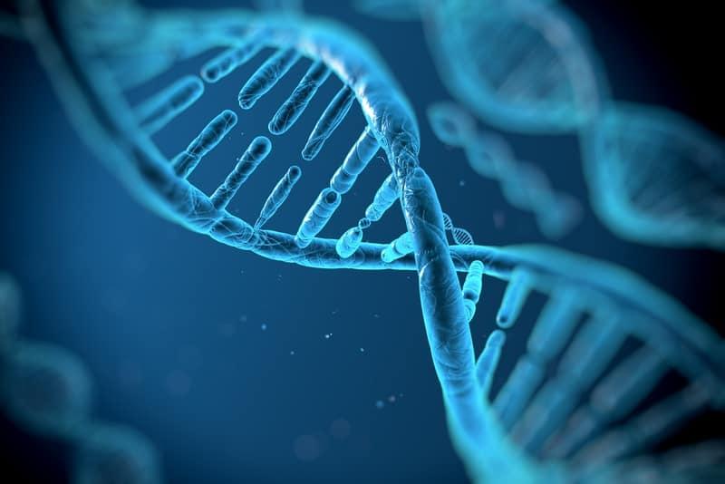 تقنية جديدة للهندسة الوراثية تولد من رحم كريسبر