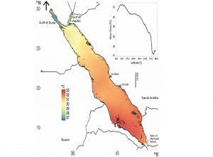 ارتفاع درجة حرارة البحر الأحمر بمعدل أسرع من المعدل العالمي