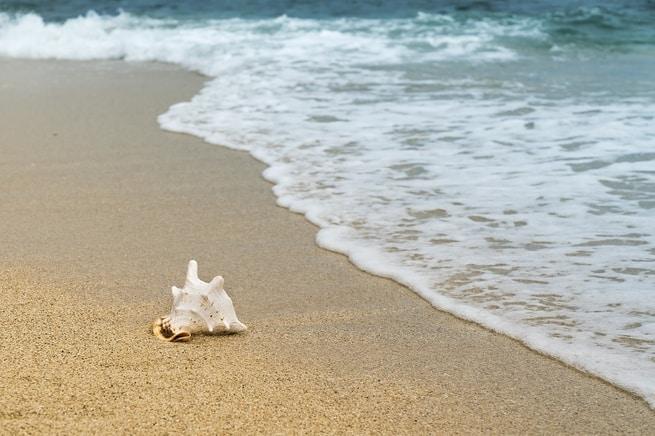 كيف تنظف الرمال بعد رحلتك إلى الشاطئ
