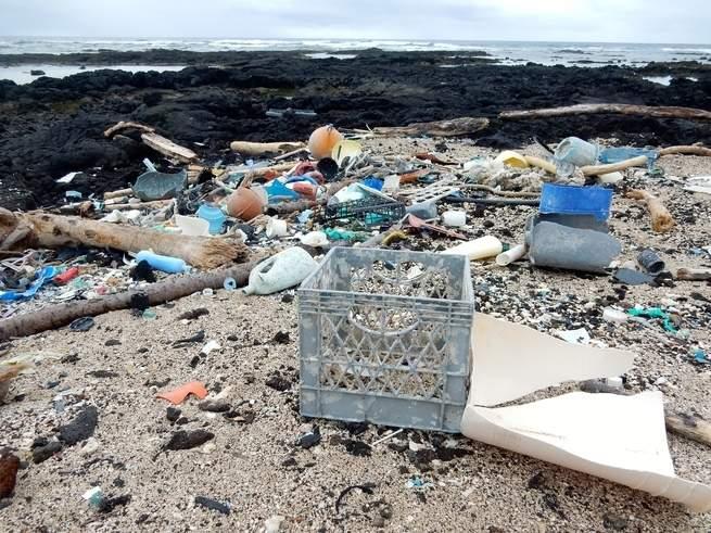 النفايات البلاستكية تنضح بالغازات الدفيئة، تماماً مثل الأبقار والسيارات