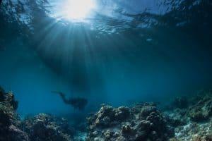 أول فيلم تحت الماء يظهر بعد ضياعه لعشرات السنين