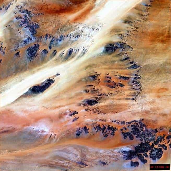 هل نستطيع إرجاع الصحراء إلى اللون الأخضر؟