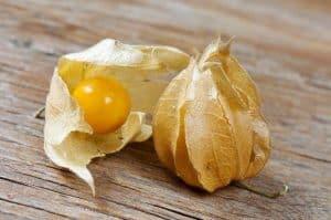 قد تحب هذه الفاكهة البرية اليتيمة بفضل التعديل الجيني عليها
