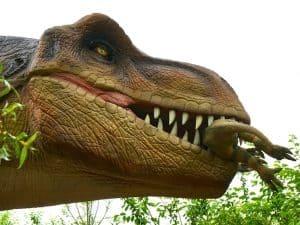 تُرى ما الذي كانت تأكله الديناصورات؟