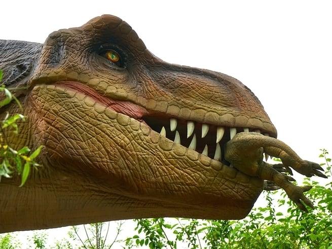 ت رى ما الذي كانت تأكله الديناصورات بوبيولار ساينس العلوم للعموم