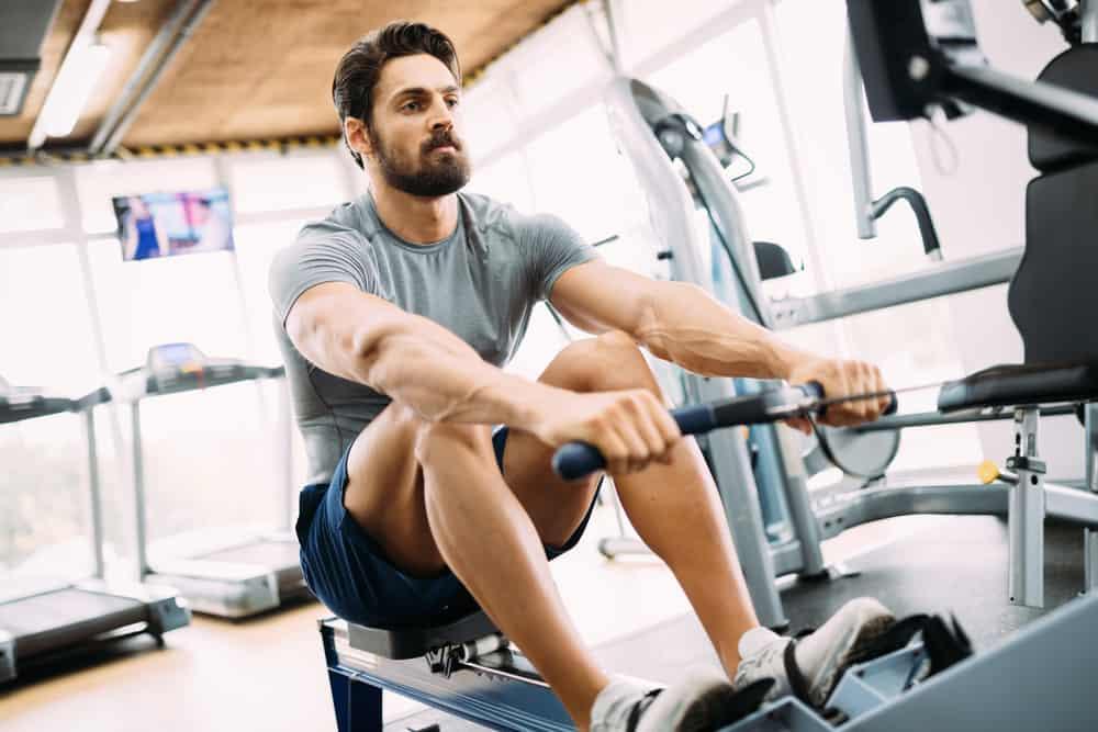 كل ما ترغب في معرفته عن العضلات