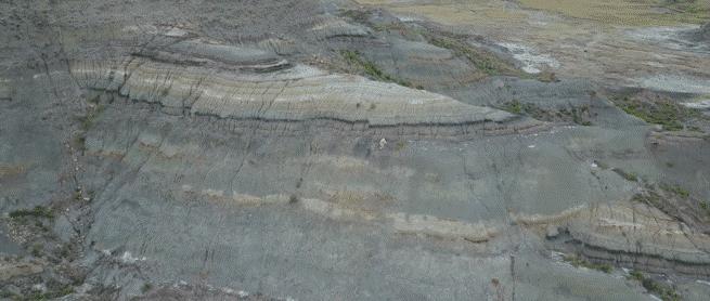 حفريات جديدة قد تكشف لغز اللحظات الأولى لانقراض الديناصورات