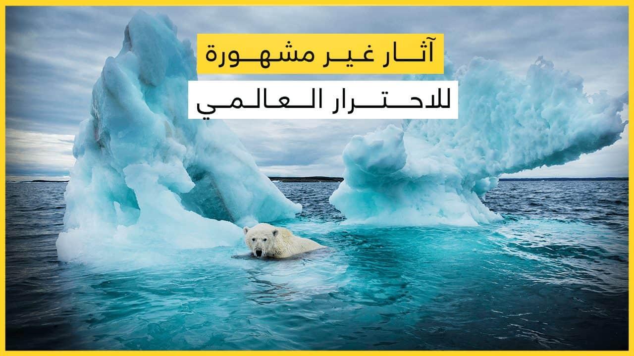 5 آثار غير مشهورة للتغير المناخي
