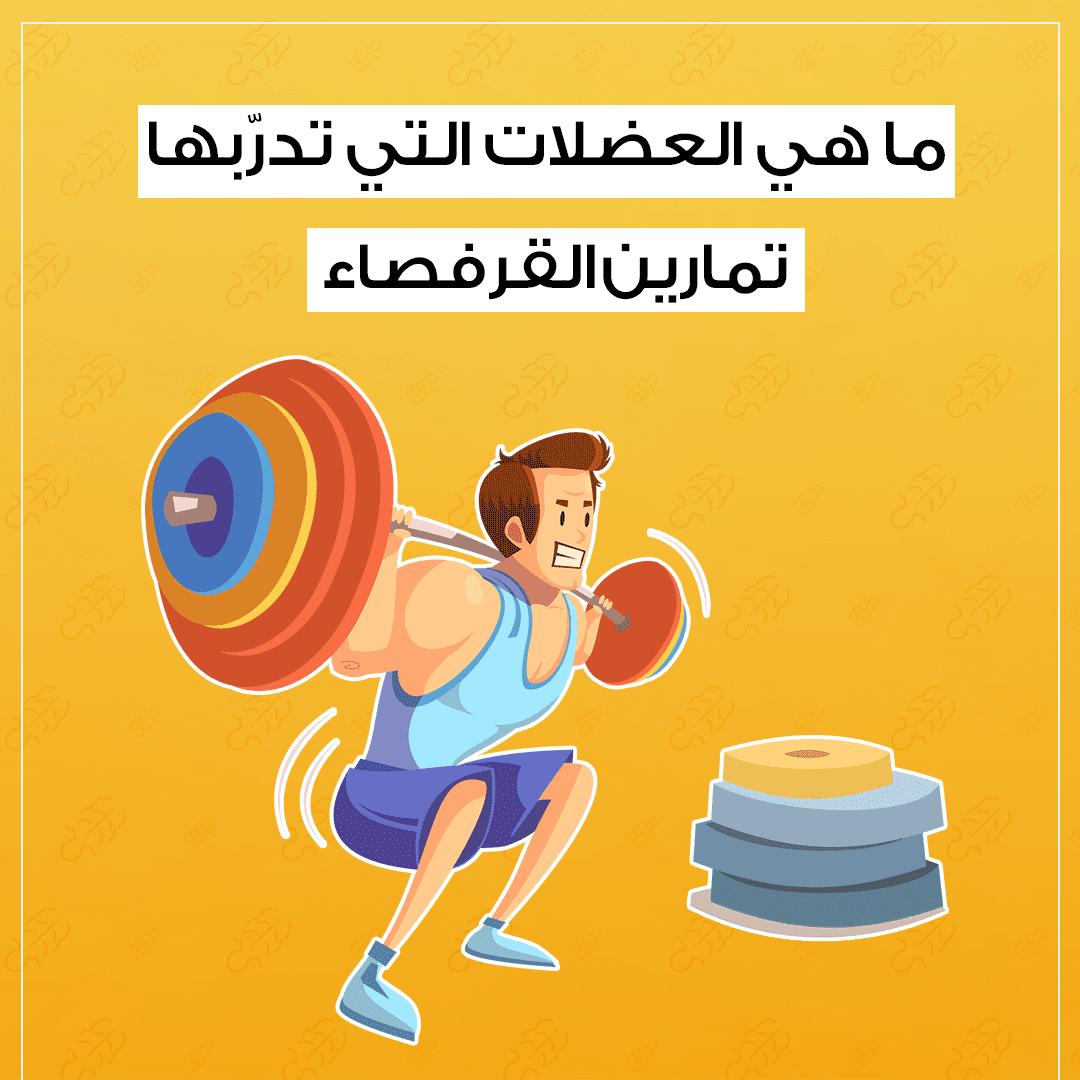 ما هي العضلات التي تدربها تمارين القرفصاء؟
