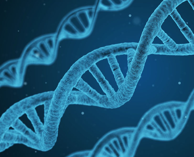 موجز تاريخ الجينات