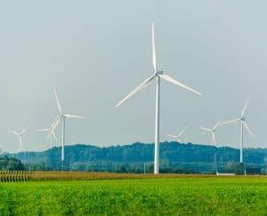 مستقبل العمل: ماذا تعرف عن الوظائف الخضراء؟