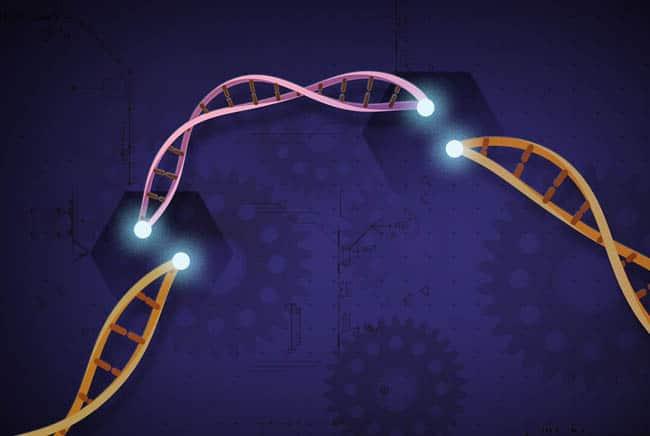 كريسبر, العمى, الرؤية, الإبصار, تقنية كريسبر, التعديل الجيني, بيولوجي