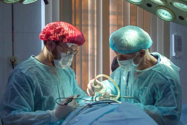 أطباء, سبات, عمليات, طب, تقنية, بيولوجي