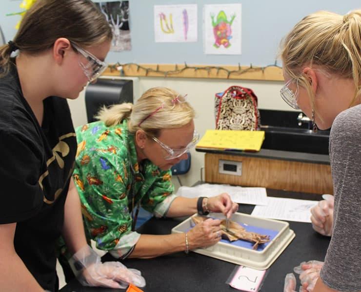 لهذه الأسباب يتراجع الطلاب عن دراسة المواد العلمية