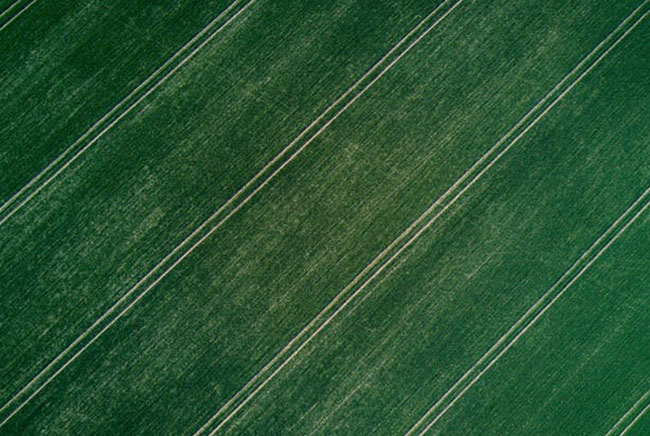تربة, التغير المناخي, مقالات علمية, علوم, بيئة