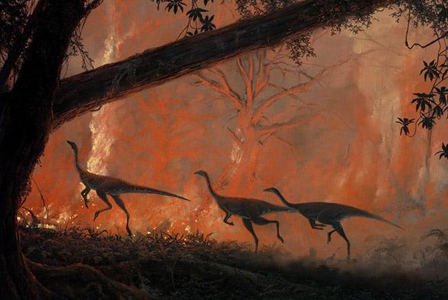 ديناصورات, انقراض, غابات, شجر, الحياة على الأرض, بيئة, حراق الغابات