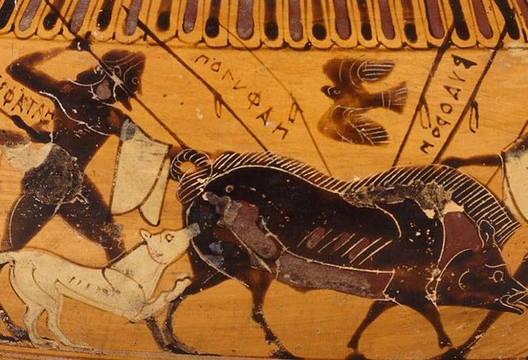 هل امتلك البشر القدماء مهارات قوية في الصيد والركض؟