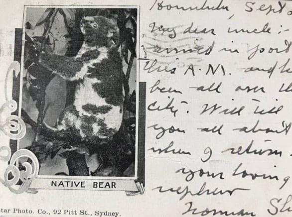يظهر الكوالا على بطاقةٍ بريدية عام 1903