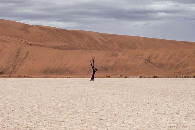 المناخ, التغير المناخي, الاحتباس الرحراي, نماذج المناخ, طبيعة, أرض