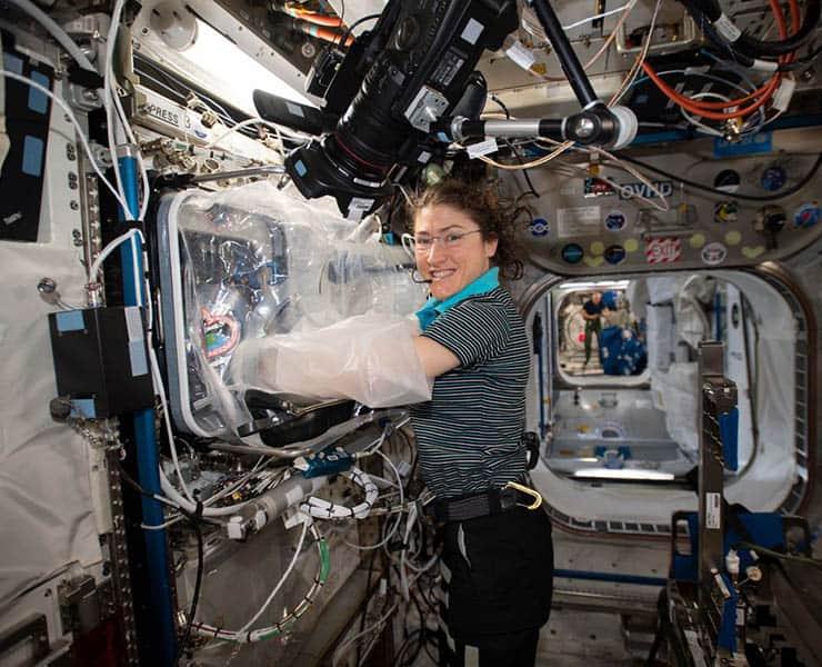 قد يكون الفضاء المكان المثالي لإنماء الأعضاء البشرية