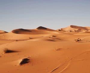 هكذا كان شكل الحياة في الصحراء الكبرى خلال عصر الهولوسين