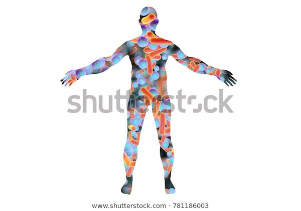 الميكروبيوم البشري