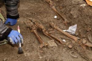 ما الذي تخبرنا به الحفريات وعينات الحمض النووي عن تطور ذكاء البشر؟