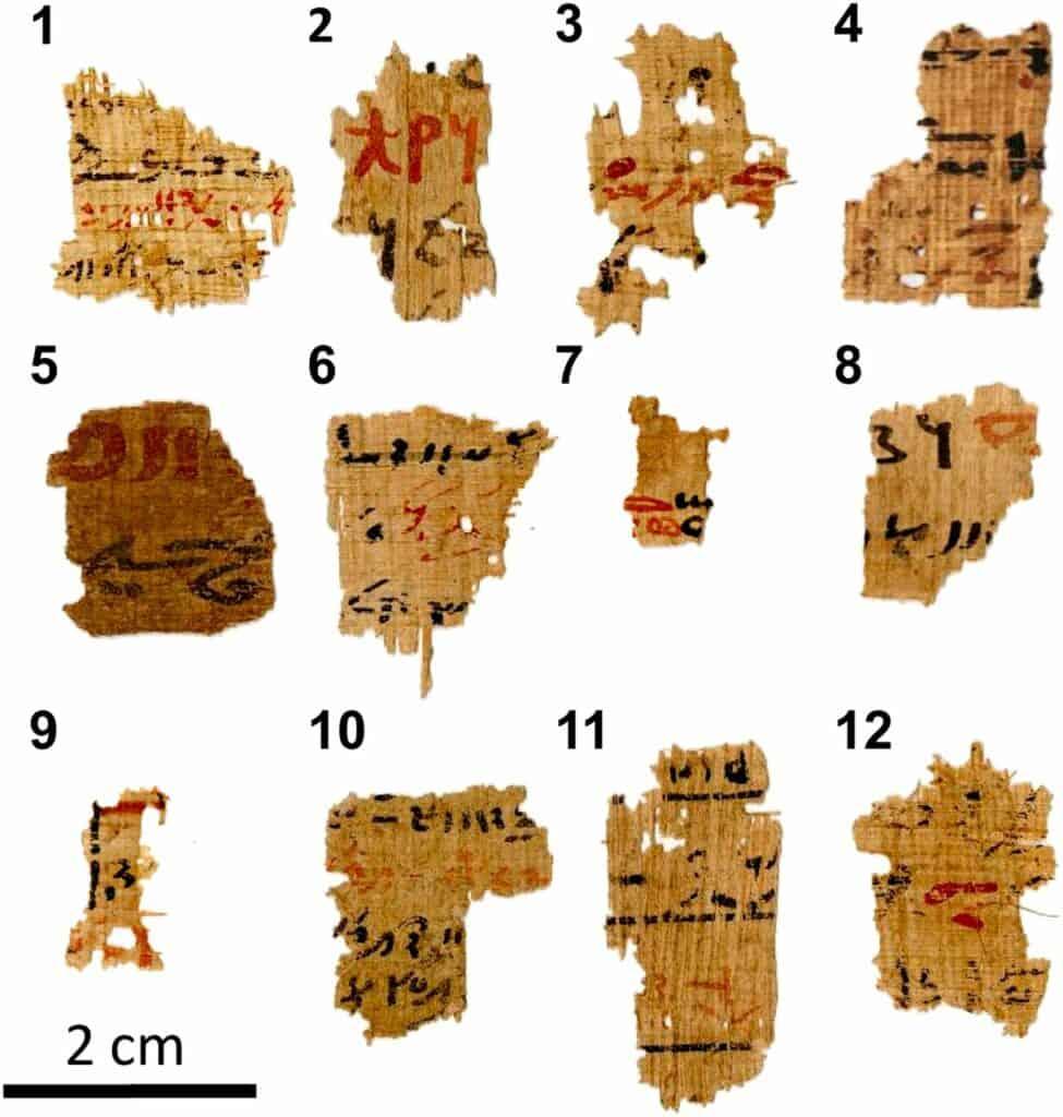 اكتشاف مصدر الحبر في الكتابات المصرية القديمة