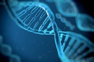 لبنة أساسية للحياة: العلماء يرسمون خريطة البروتين البشري