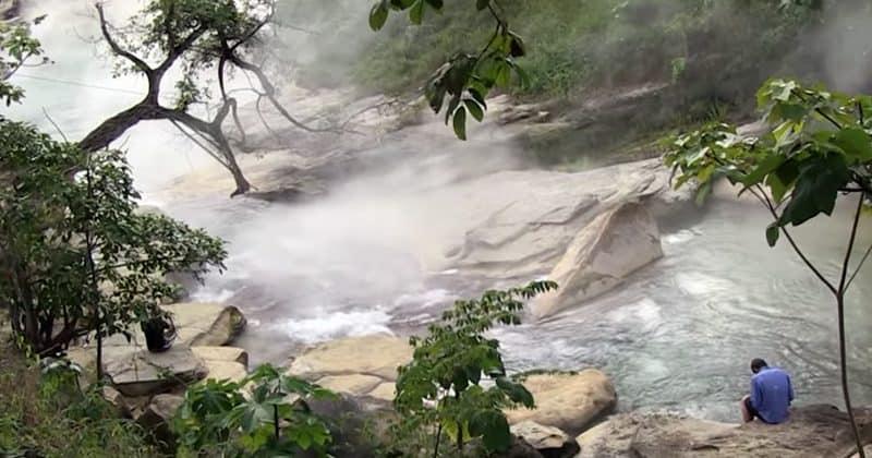 94 درجة مئوية: هكذا تخفي غابات الأمازون أسطورة النهر المغلي